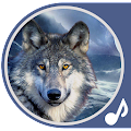 Wolf Sounds APK for Kindle Fire