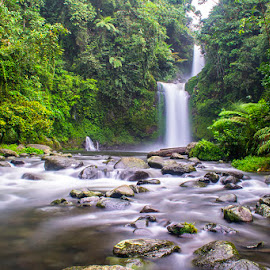 the wonderfull waterfall of west sumatera by Satto Say - Landscapes Forests