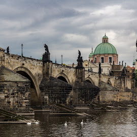 Charles Bridge, Prague by Libor Vočadlo - City,  Street & Park  Historic Districts ( history, cloudy, morning, prague, charles bridge )