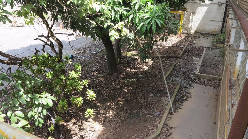 Terreno Com Galpão Para Locação Em Guarulhos - Próximo Ao Ae