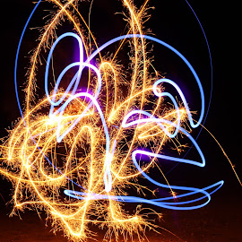 The Jester by Scott Valenzuela - Abstract Light Painting ( abstract, light painting, colors, night, sparks )