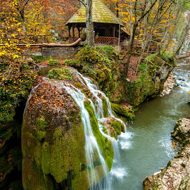 bigar water fall by Ionut Olaru - Nature Up Close Water ( forest place, bigar water fall, magic place, water fall, bigar, bigar water )