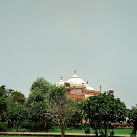 Beauty Of Agra-Taj Mahal by Munendra Kumar - Buildings & Architecture Statues & Monuments (  )