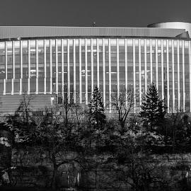 Gleem by Jennifer Schmidt - Buildings & Architecture Other Exteriors ( black and white, buildings, landscape photography, architectural detail, architecture )