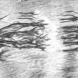 sand veins by Rachel Rachel - Abstract Patterns ( sand, mingle, vertical lines, white, black )