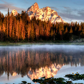 Morning Reflections by John Larson - Landscapes Mountains & Hills ( mountains, trees, reflections, pond, mist, water lillies )