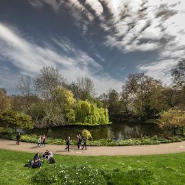 Park I Buckingham, London by Dipmalya Chatterjee - City,  Street & Park  City Parks ( blue sky, park, greenery, leisure, lake, garden, buckingham palace )