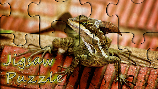 Pzls jigsaw puzzles for adults APK for Nexus