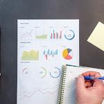 5 projetos de sustentabilidade para colocar em prática na sua empresa