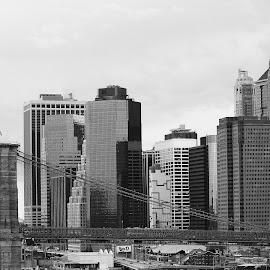 Manhattan by Finley Delouche - City,  Street & Park  Skylines ( manhattan skyline, brooklyn bridge, skyline, new york skyline, black and white, skyscrapers, manhattan, new york, architecture, lower manhattan, suspension bridge, east river, new york city )