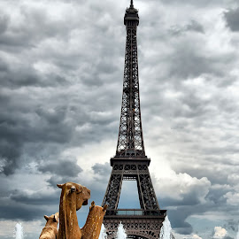 Paris by Stefania Loriga - Buildings & Architecture Statues & Monuments