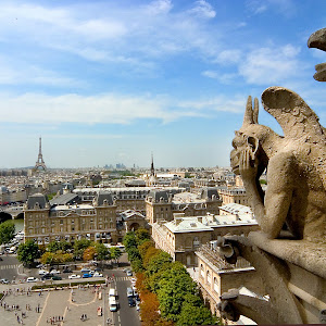 Paris-chimera_8224j.jpg