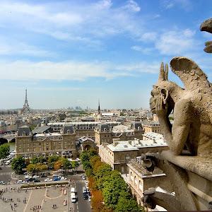 Paris-chimera_8224j.jpg