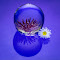 Blue IMG_0042-1 2048.jpg