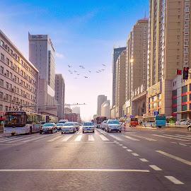 Shenyang Metro by Monzur Sazid Ahmed - City,  Street & Park  Street Scenes ( shenyang metro, street )