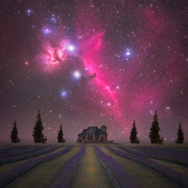 Lavender Night by Andy Taber - Digital Art Places