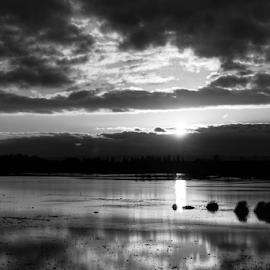 Marysville  by Todd Reynolds - Black & White Landscapes