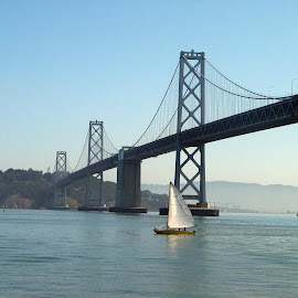 Sailing Under the Old Bay Bridge by Christine B. - Buildings & Architecture Bridges & Suspended Structures ( sailing, california, bay bridge, sailboat, san franscisco,  )