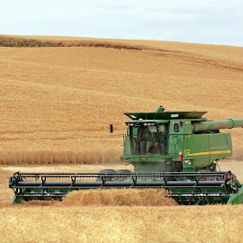 Farming the Palouse - Feeding the World by Kurt Bailey - Transportation Other (  )