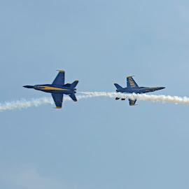 Crossing Angels by Bill Telkamp - Transportation Airplanes ( airplanes, airplane, jet, blue angels, airshow )