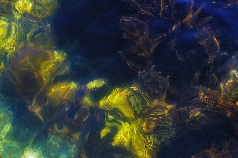 Painted seaweed by Chris Seaton - Nature Up Close Water ( water, abstract, kelp, seaweed, ocean, painting,  )
