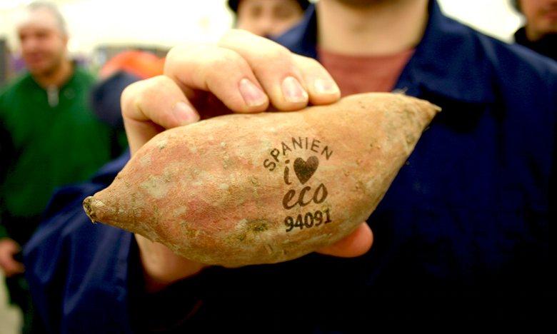Embalagens do Futuro (5/6): Supermercados suecos substituem adesivos nas frutas por marcação a laser