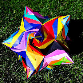 Tigra by Riley Poeschl - Novices Only Objects & Still Life ( japan, color, colorful, paper, art, japanese culture, japanese, origami, geometric, rainbow, geometry, shapes )