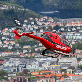 Bergen by air by Espen Rune Grimseid - Transportation Helicopters ( canon, helicopter, bergen, transport, airtransport, cityscape, view, landscape, city, norway )