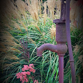 The Old Water Pump by Lorna Littrell - Artistic Objects Antiques ( metal, antiquities antique, rusty objects, artistic objects, water pump )