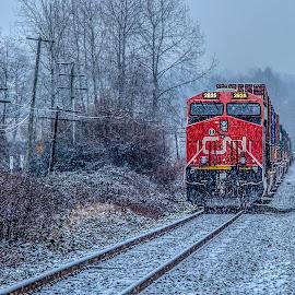 by P Murphy - Transportation Trains (  )
