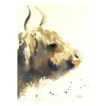 Highland cow painting wildlife art