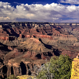 by Curtis Forrester - Landscapes Travel ( national park, grand canyon np, canyon(s), horizontal, arizona, 2012, scenic, landscape, people, united states of america )