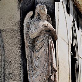 Pere Lachaise by Carrie Cadenas - Buildings & Architecture Public & Historical ( pere lachaise paris france angel death sadness )