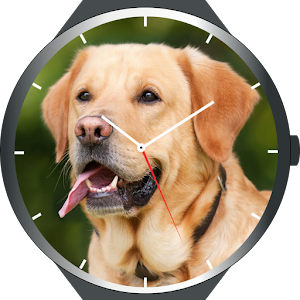 Download Dogs Watch Faces For PC Windows and Mac