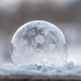 Frozen Soap Bubble by Jason Lemley - Abstract Macro ( bubble, cold, soap bubble, frozen )