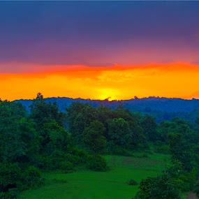 by Nayan Shaurya - Landscapes Sunsets & Sunrises ( nature, color, sunset, greenery, landscapes, landscape )