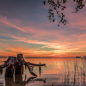 Winter Gulf Coast Sunset by Shutter Bay Photography - Landscapes Sunsets & Sunrises ( clouds, stump, waterscape, colors, sunset, landscapes )