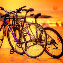 telaviv by Abu  Janjalani Abdullah - Transportation Bicycles ( bicycles, transportation )