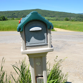 A mail box at Saint-Urbain. Charlevoix. Qc. by Réal Michaud - Artistic Objects Other Objects ( plant, countryside, blue, street, object, shade, rural )