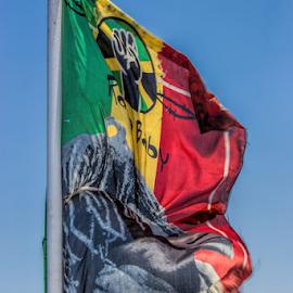 Rastafarian flag by Vibeke Friis - Artistic Objects Other Objects ( rastafarian flag,  )