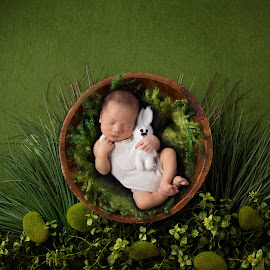 Rainforest by Vcy Ho - Babies & Children Babies