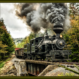 The Crossing by James Eickman - Transportation Trains (  )