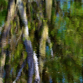 Reflections by Viana Santoni-Oliver - Abstract Patterns ( water, nature, watercolors, outdoor, reflections, lake, forest, woods, outside )