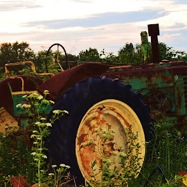 Old Tractor by Dixie Richie - Artistic Objects Other Objects (  )