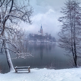 Bled Winter Wonderland by Jimmy Kohar - Landscapes Travel