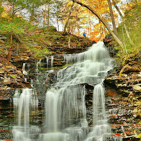 Ricketts Glen by Travis Houston - Landscapes Waterscapes ( waterfalls, nature, waterscape, gorge, waterfall, pennsylvania, nikon, ricketts glen,  )