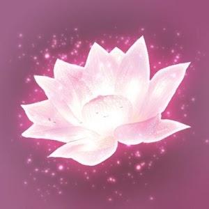 Lotus Digital For PC