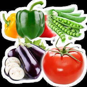تعليم أسماء الخضروات For PC (Windows & MAC)