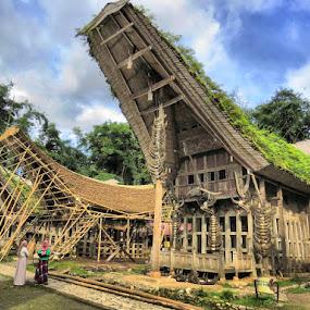 Tongkonans of Tana Toraja by Kinga Urban - Buildings & Architecture Other Exteriors ( adventure, houses, indonesia, architecture, travel, places )