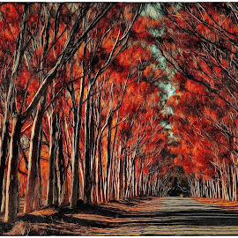 Fiery Lane by Glenn Visser - Digital Art Places ( red, trees, lanr, road, fire )